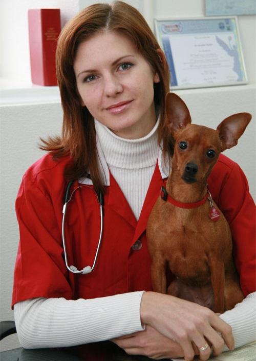 ветеринарный врач спб вакансии